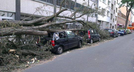 Untungnya Memiliki Asuransi Mobil, Cari Tahu Fasilitasnya